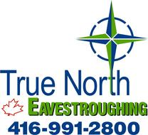 True_north_company_logo