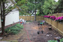 photo of Back- and side- Yard Renovation from a So Green Canada (Landscape design / Build) review