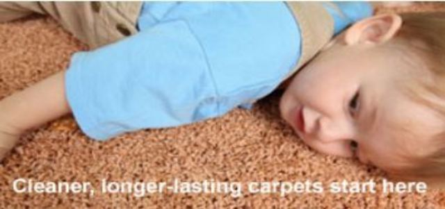 Reliable Carpet Amp Upholstery Care Inc Carpet Amp Rug