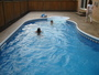 photo of Pool from a Backyard Getaways Inc review