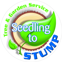 Seedling To Stump's logo