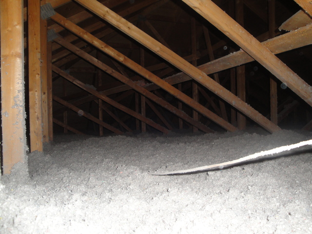 Review of tropical insulation inc in