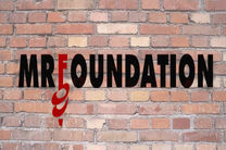 Mr Foundation Inc's logo