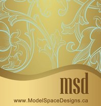 Model Space Designs's logo