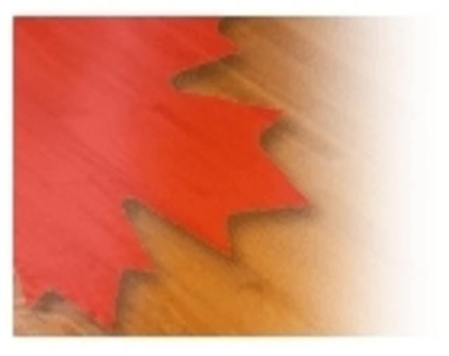Canada Hardwood Flooring Inc Floor Retailers In Ajax