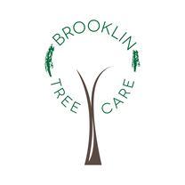 Brooklin Tree Care's logo