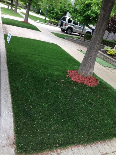 Review Of Lazy Lawn Inc Lawn Maintenance In Toronto