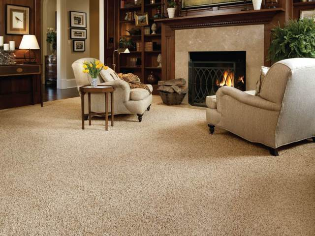 Carpet selections carpet installers in north york - Carpets for living room online india ...