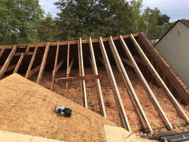 Straightace Roofing Amp Maintenance Roofing In Hamilton