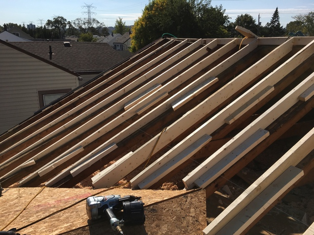 Straightace Roofing Amp Maintenance Images In Hamilton