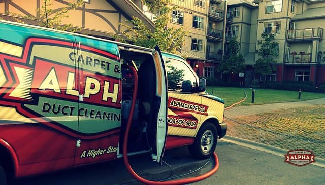 Alpha Carpet Duct Cleaning Carpet Rug Cleaning