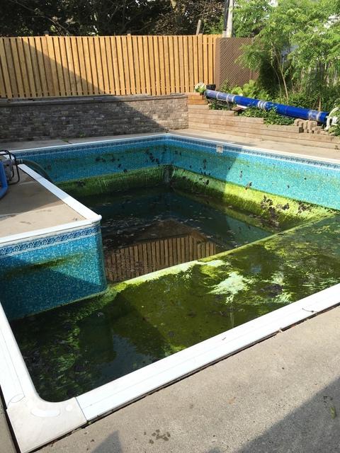 Blue 2 Green Group Ltd Swimming Pools Spas Amp Hot Tubs