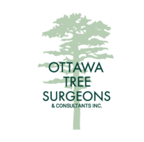 Ottawa Tree Surgeons's logo