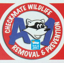 A-1 checkmate wildlife removal  & prevention.'s Logo