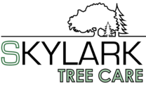 Skylark Tree Care's logo