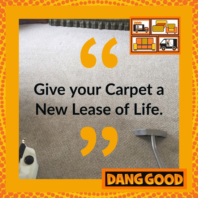 Dang Good Carpet And Furnace Cleaning Carpet Amp Rug