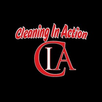 Cleaning In Action Windows & More Inc.'s logo