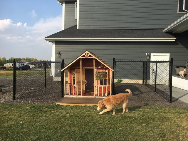 Dog Run Fence With Review Of Abacus Landscaping Ltd