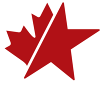 National Star Roofing Specialists's logo