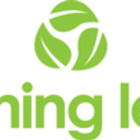 Turning Leaf's logo