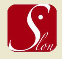 Slon Construction Inc's logo