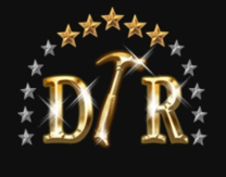 Dream Touch Renovations's logo