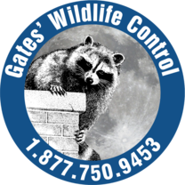Image result for gates wildlife logo