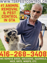 TSR Pest Control & Wildlife Animal Removal's logo