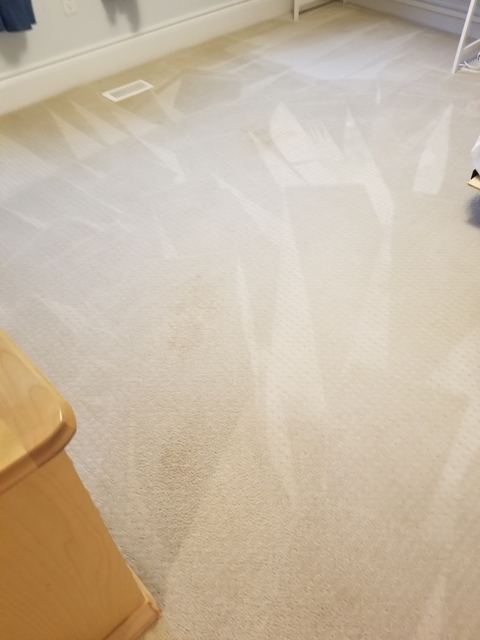 Oliva Carpet Amp Rug Cleaning Carpet Amp Rug Cleaning