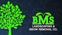 BMS Landscaping &Snow Removal CO.'s logo